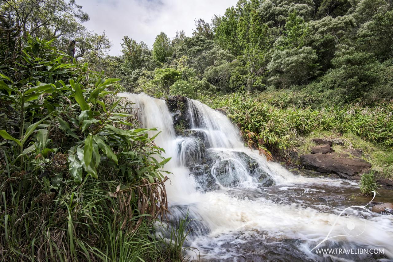 lower waipoo falls.jpg