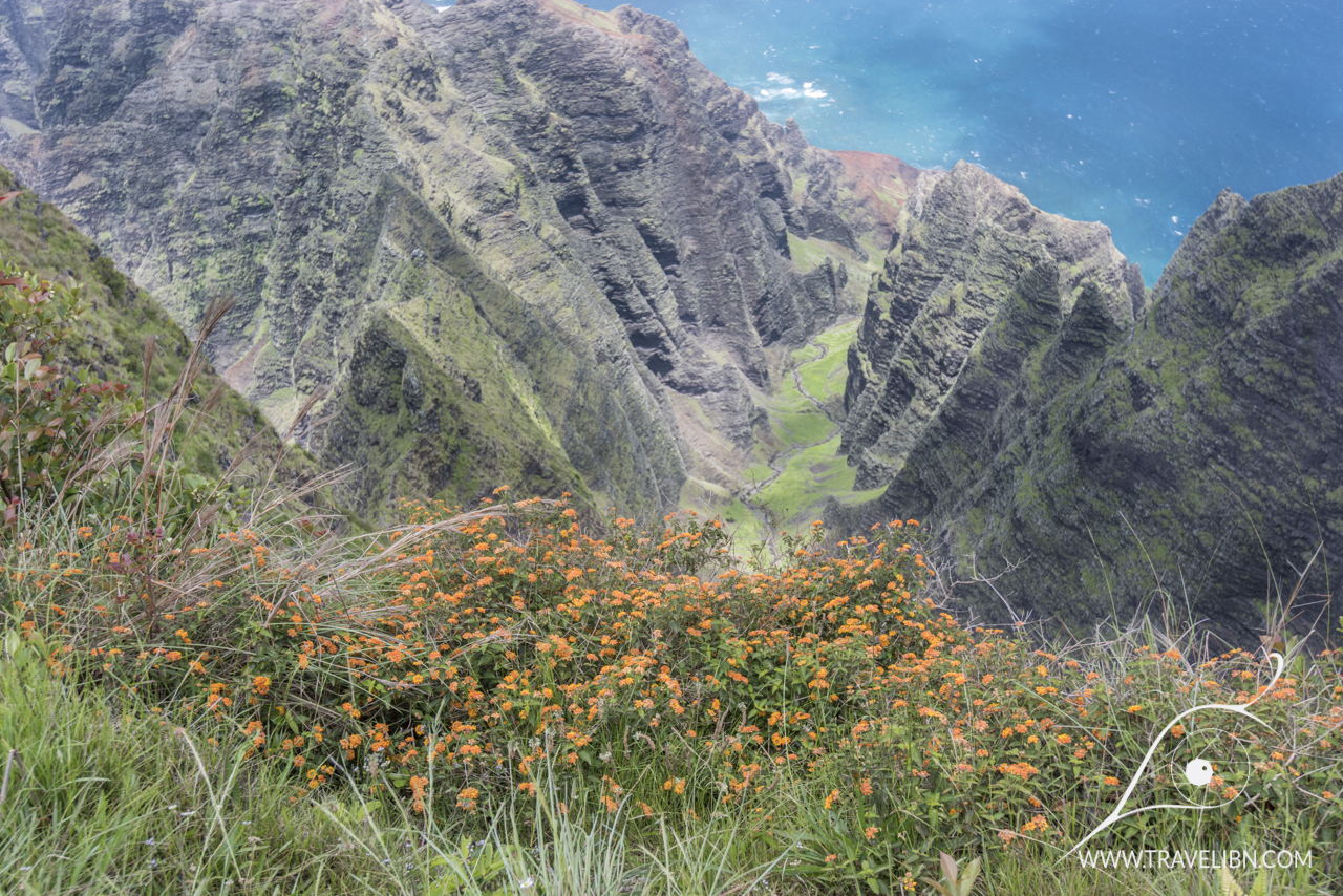 View from the lookout on Awa'awa'puhi Valley