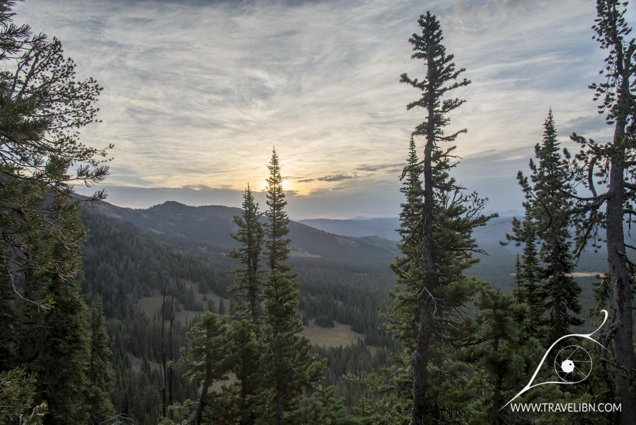 Hiking the Mt. Washburn trail