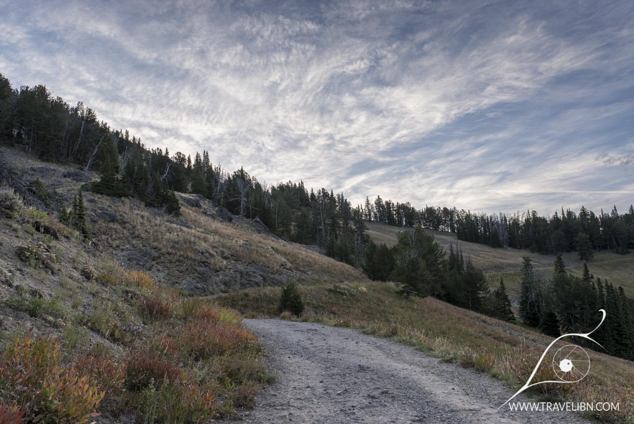 Mt. Washburn Trail