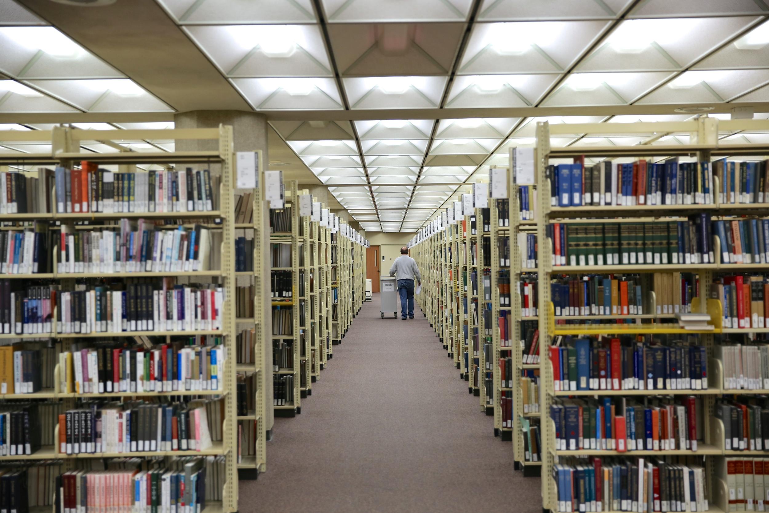 Custard in search of more books