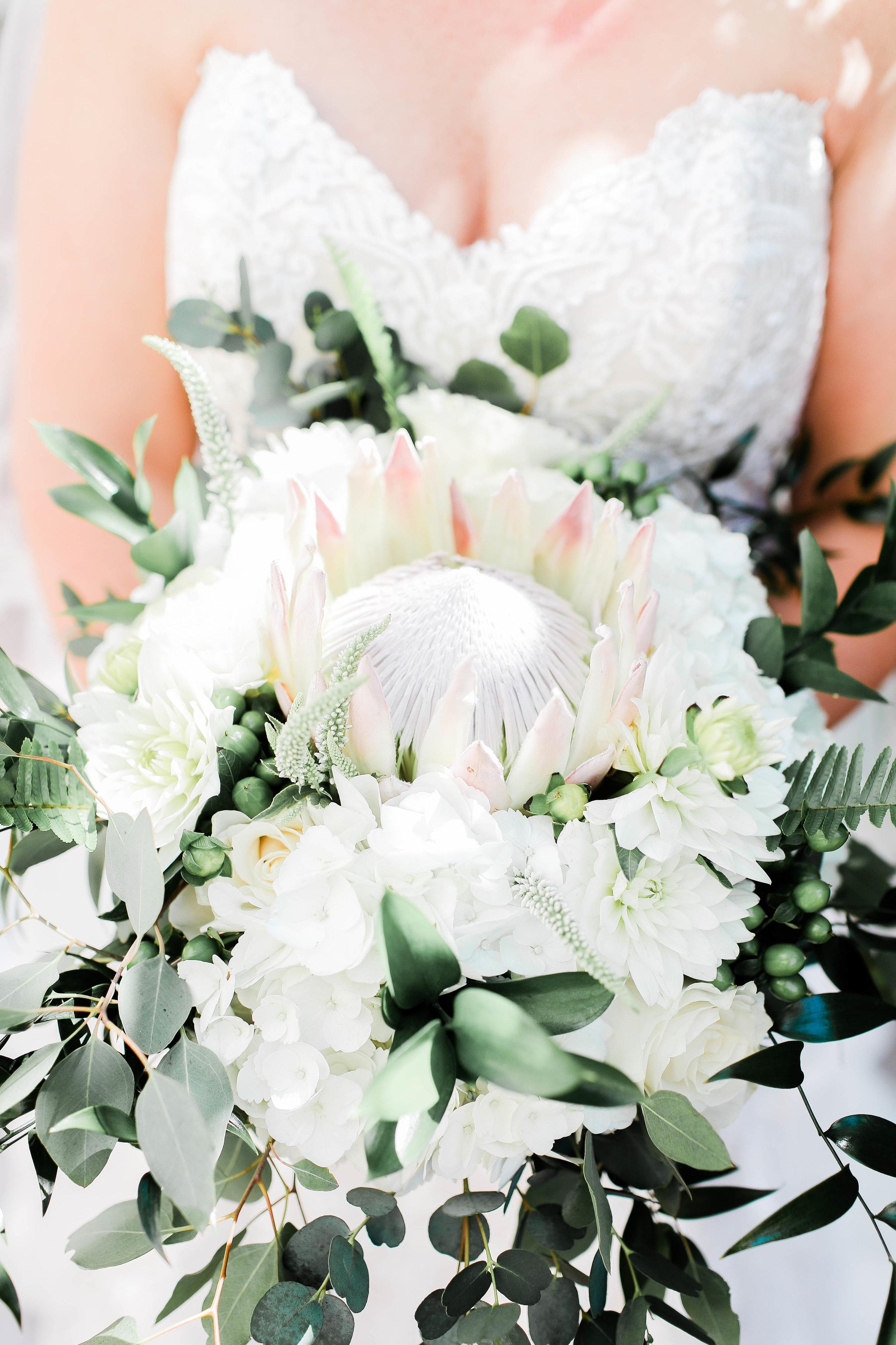 A-Lydia-Rohan-Downtown-Boise-Wedding-3.jpg