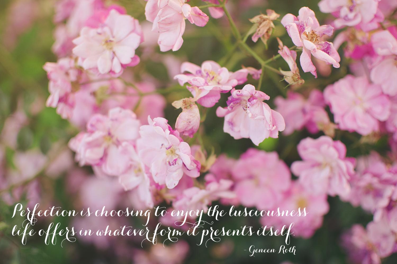 www.angiewarren.com // geneen roth quote