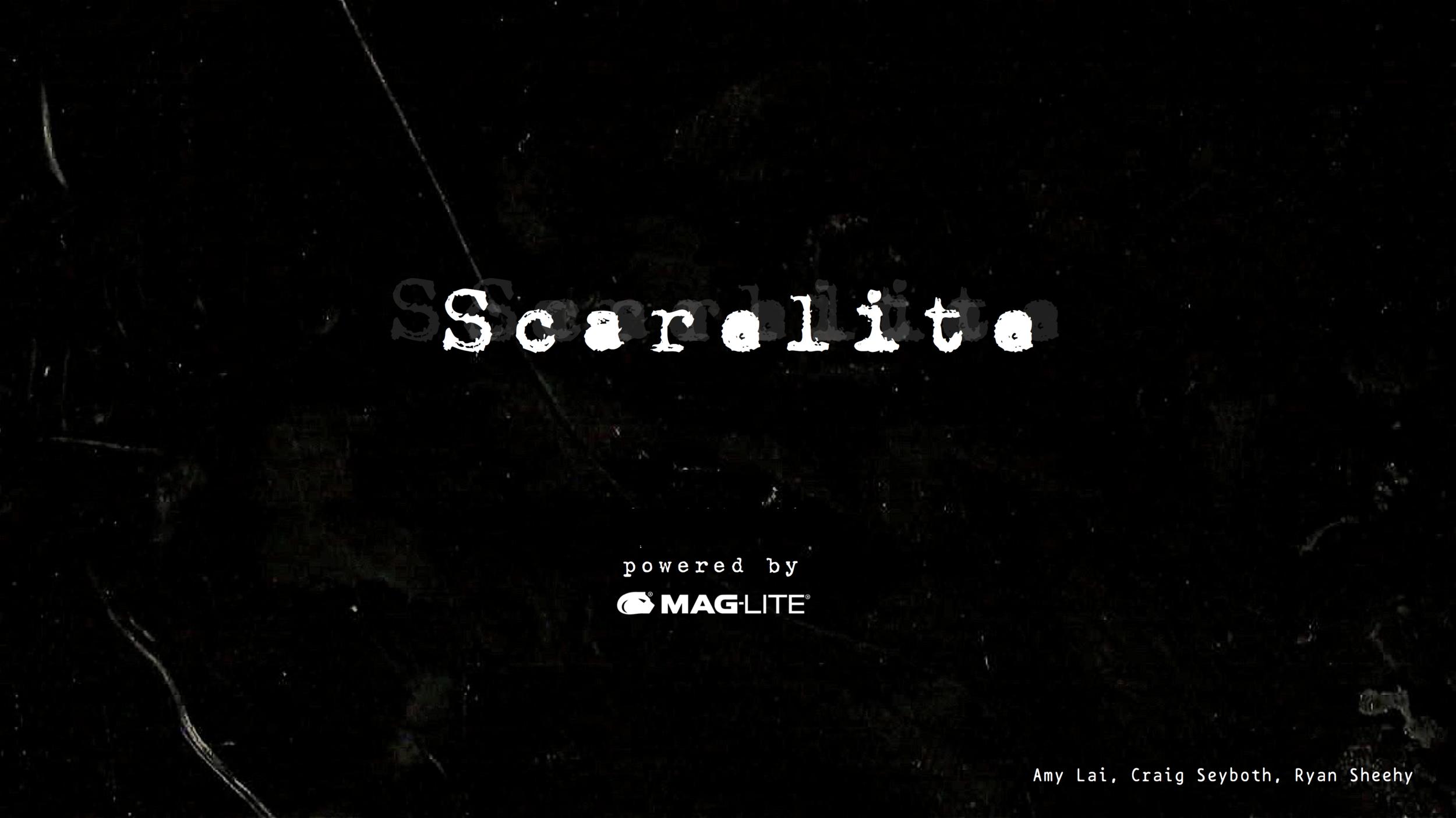 Ryan Sheehy Maglite Scarelite