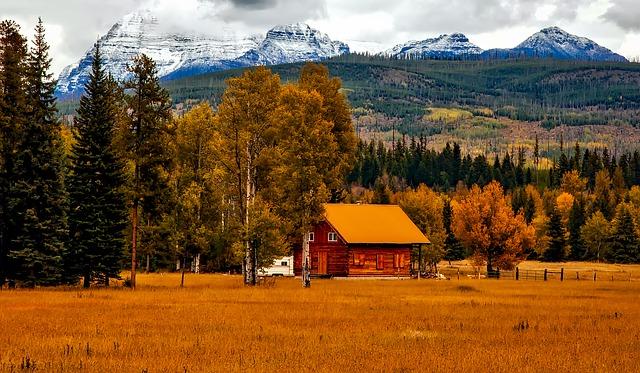 autumn-1748644_640.jpg