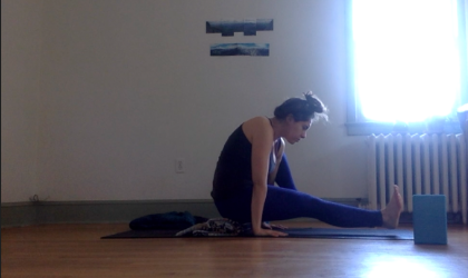 eka hasta bhujasana / elephant trunk pose - not for the faint of wrist extension.   see the progression towards it here (and feel free to facebook friend me!)