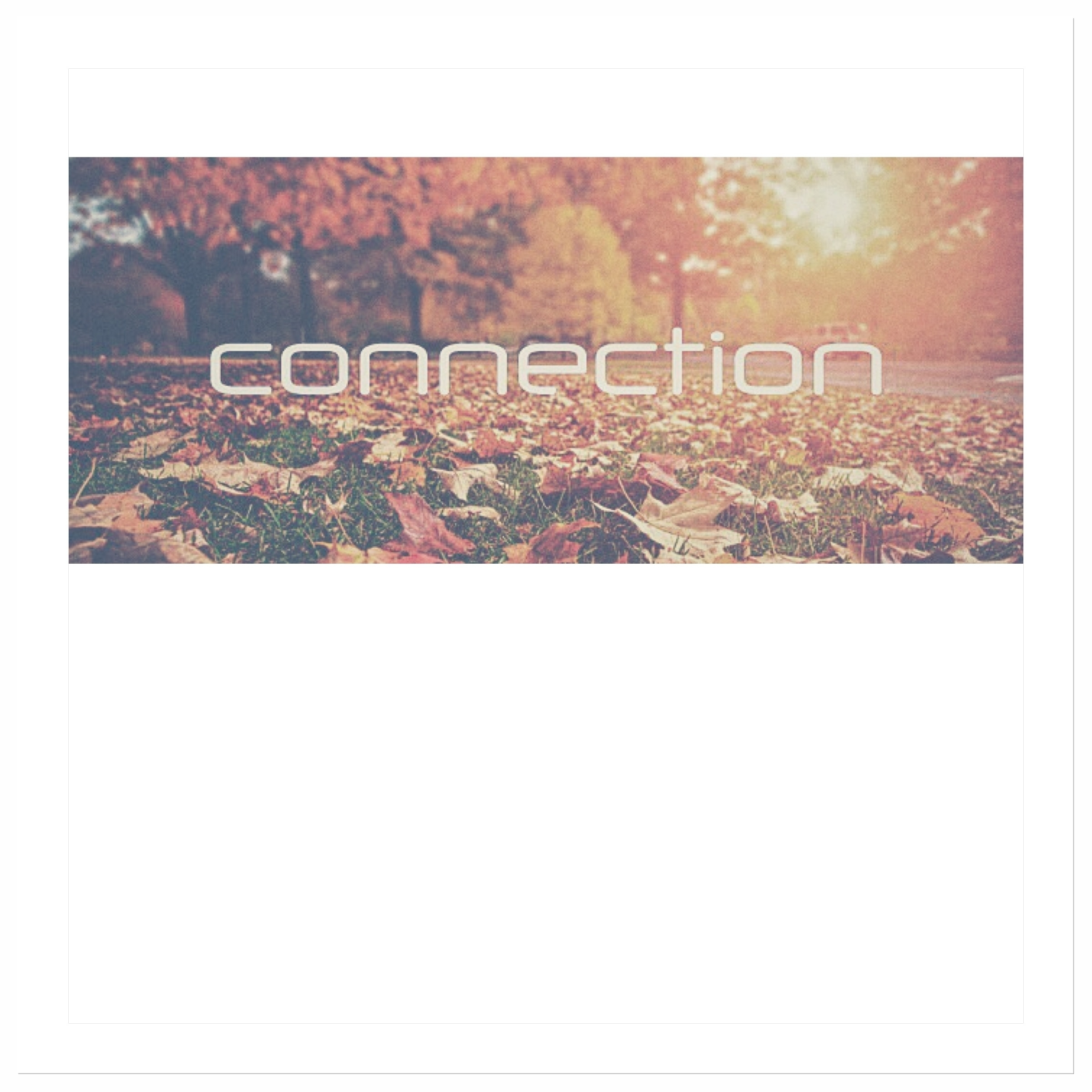 Connection (cover art).JPG