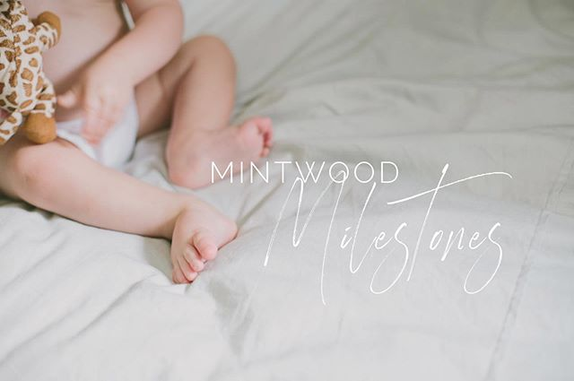 Introducing...Mintwood Milestones! ✨A new, all-in-one approach to documenting baby's first year. Read all about in our our website, www.mintwoodphotoco.com ! #abq #albuquerque #newborn