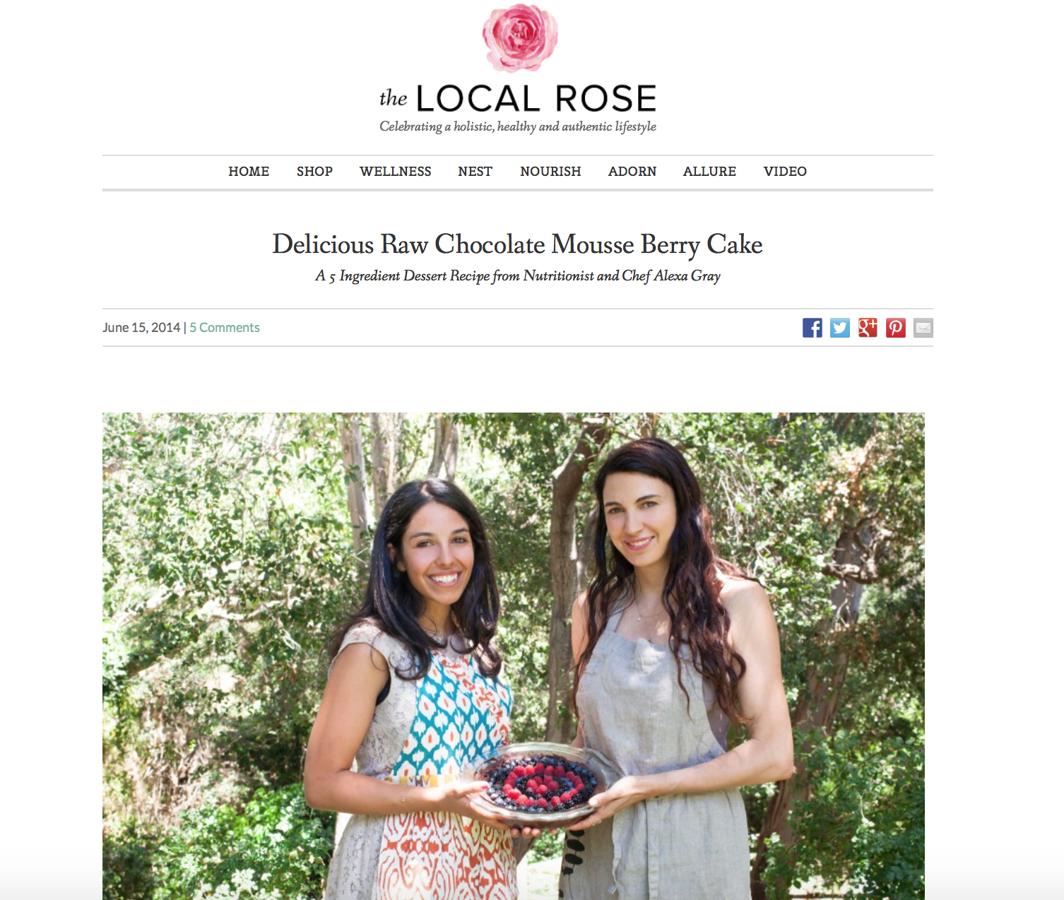 www.thelocalrose.com:nourish:delicious-raw-chocolate-mousse-berry-cake:.png