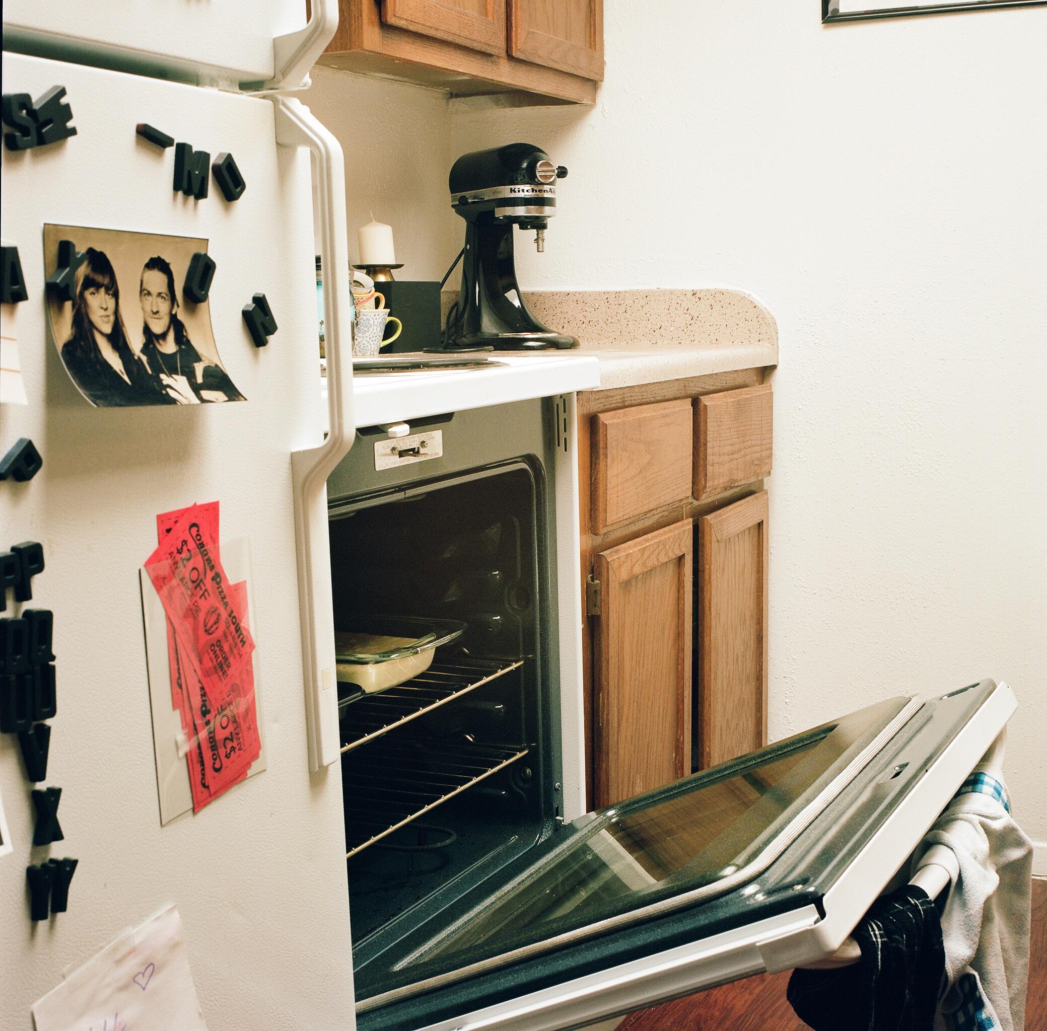 brileynoel_fridge1