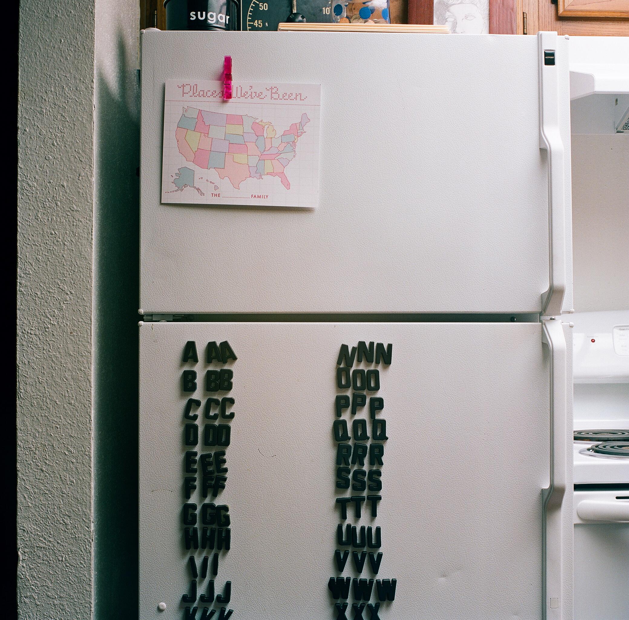 brileynoel_fridge3