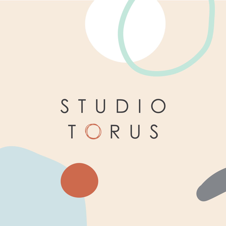 Studio torus.png