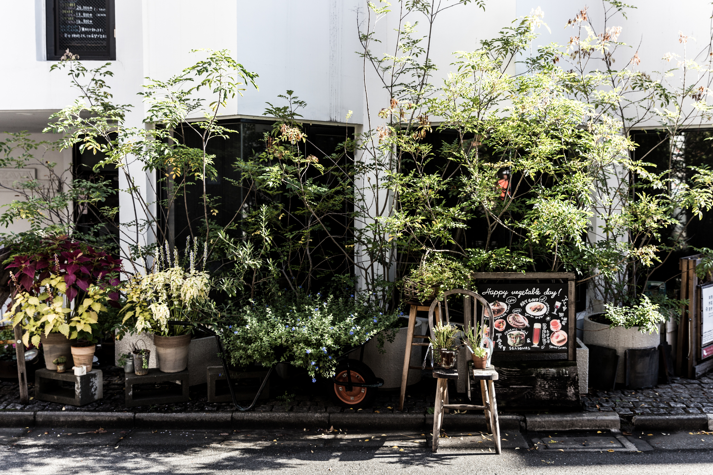 Somewhere in the backstreets of Aoyama