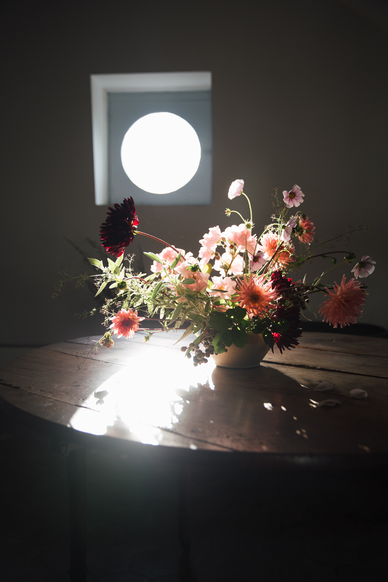 The light in the flower studio was seriously magic