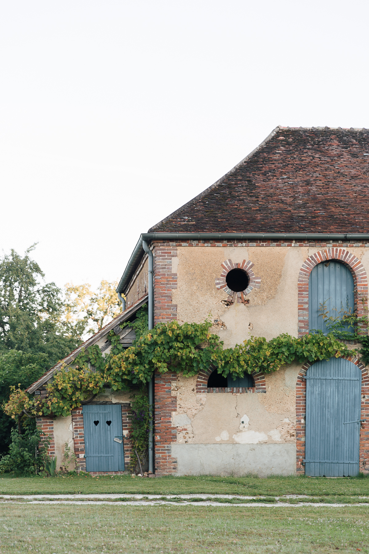 Grapevines run along the length of La Ferme
