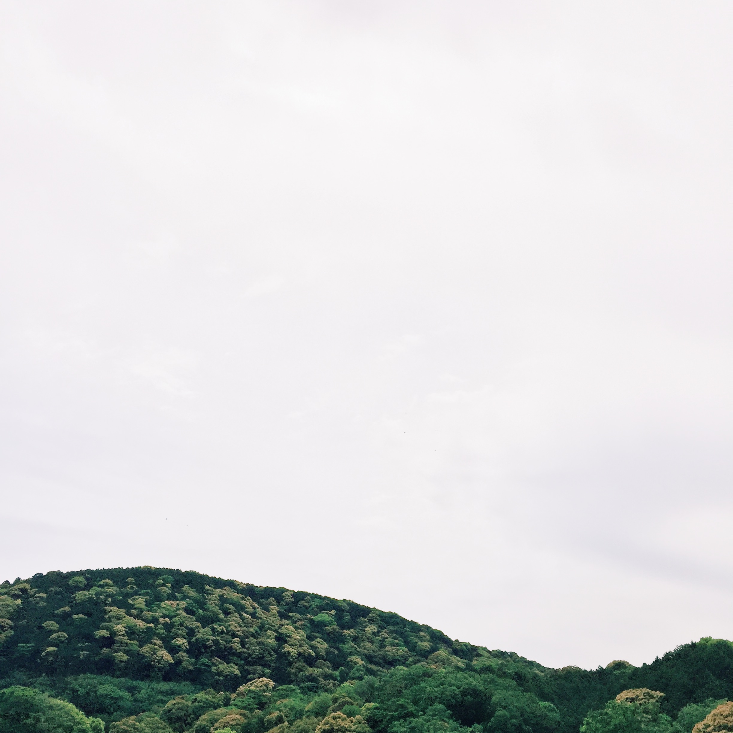 Processed with VSCO with k1 preset