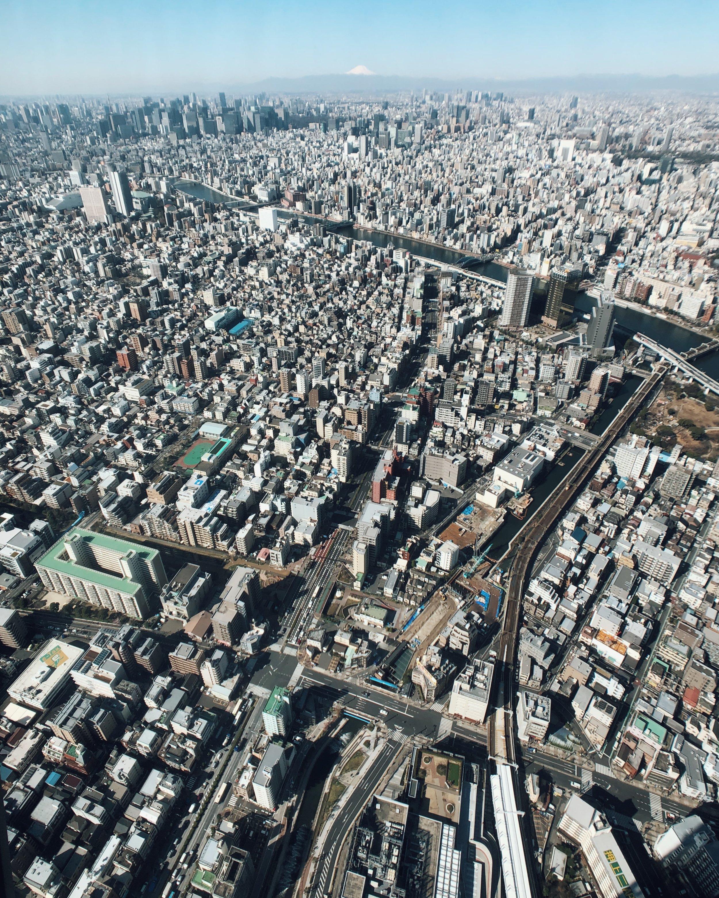 The concrete jungle of Tokyo.