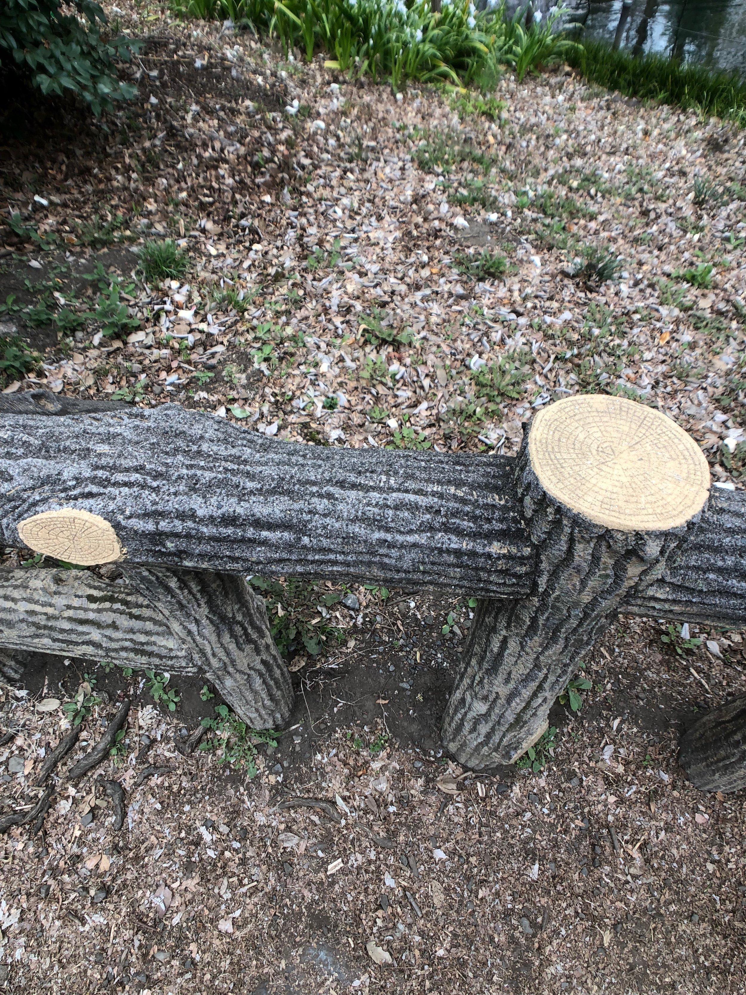Fake wood, Kichijoji.