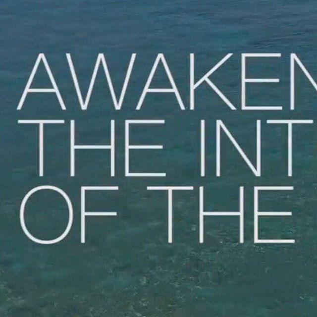 Awaken The Intelligence Of The Body . . . 6/6