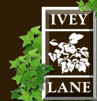 Ivey Lane