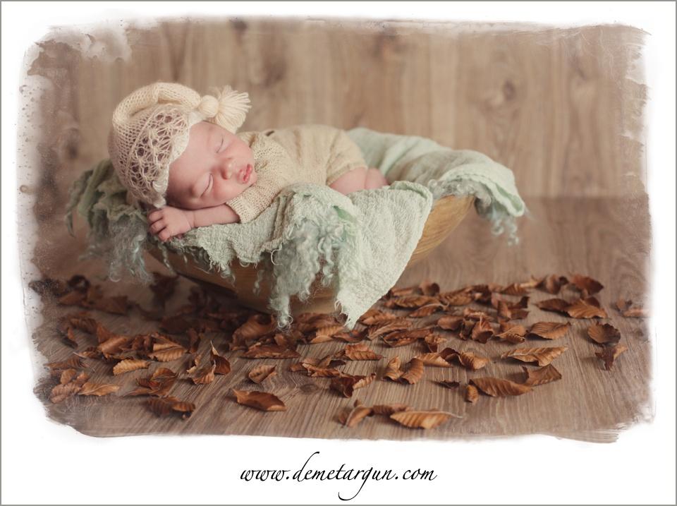 yedidogan bebek fotografi