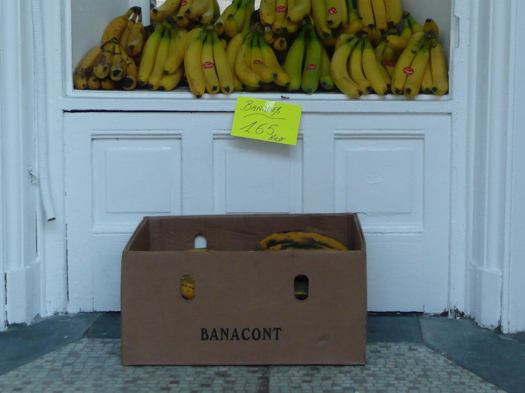 Titel: Counting Bananas   Bildquelle: © Florian Kiel
