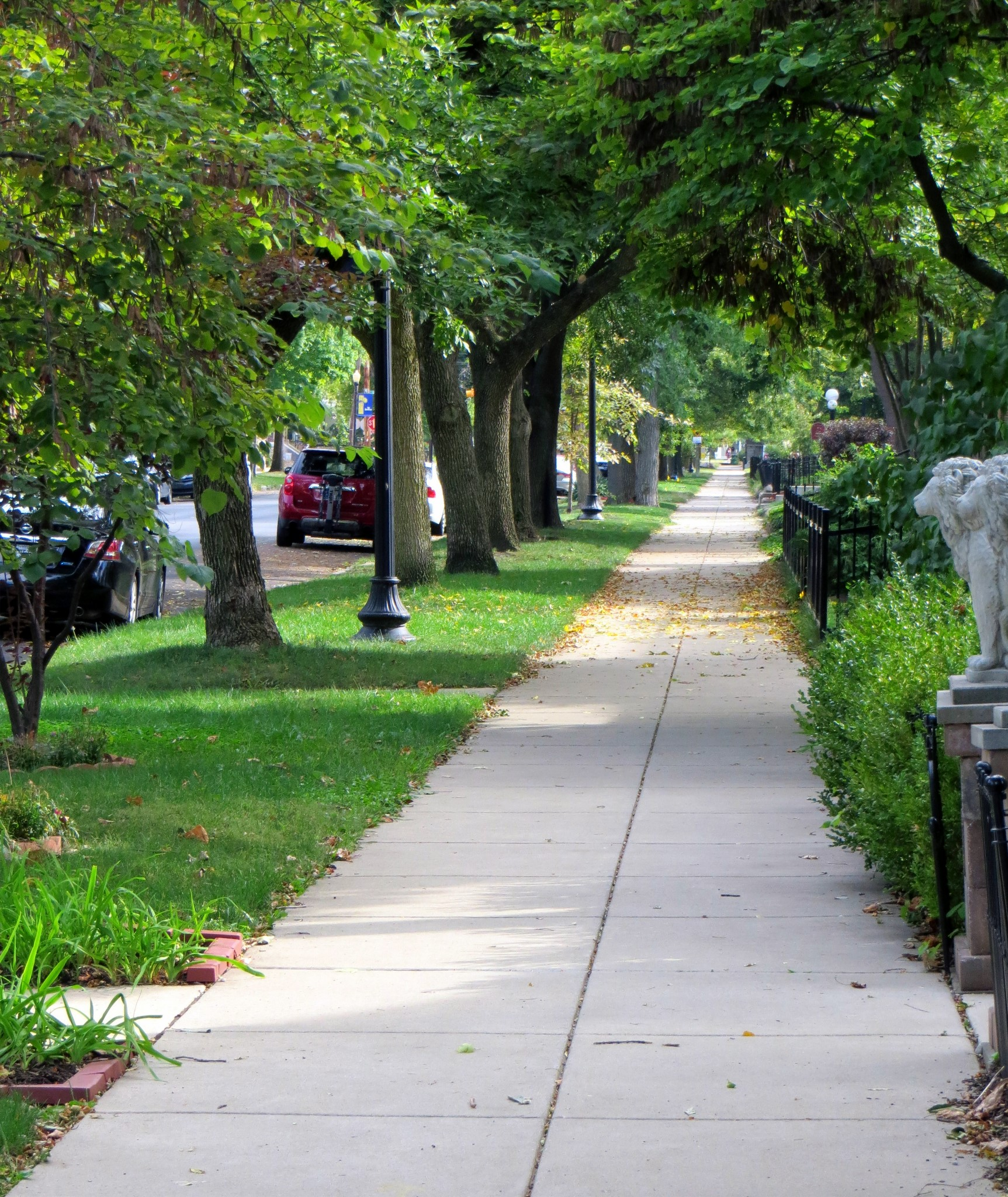 Example of a good sidewalk with a planting strip or right of way between it and the street