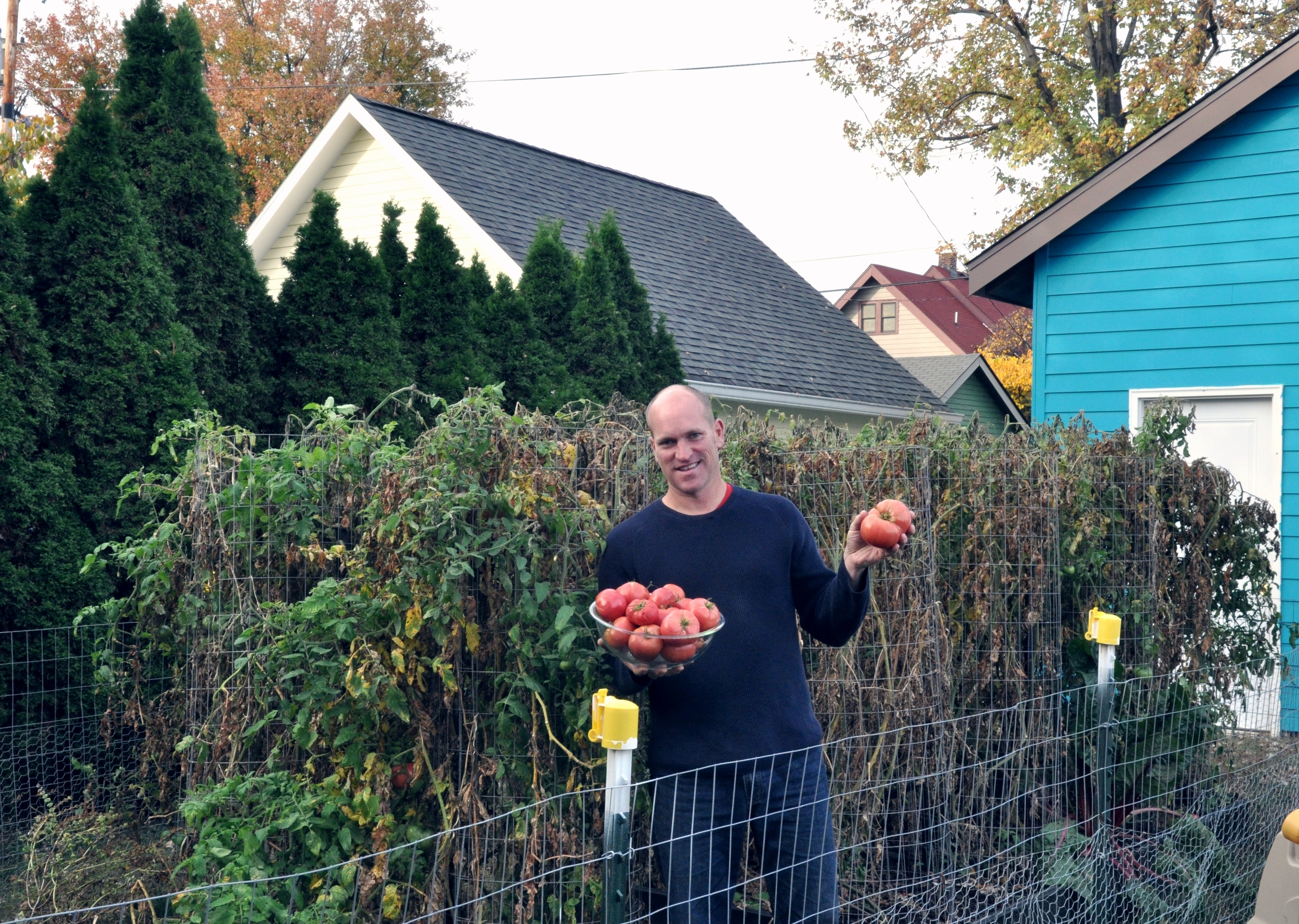 Pete displays a sampling of the tomato harvest from his new and larger, sunnier garden.