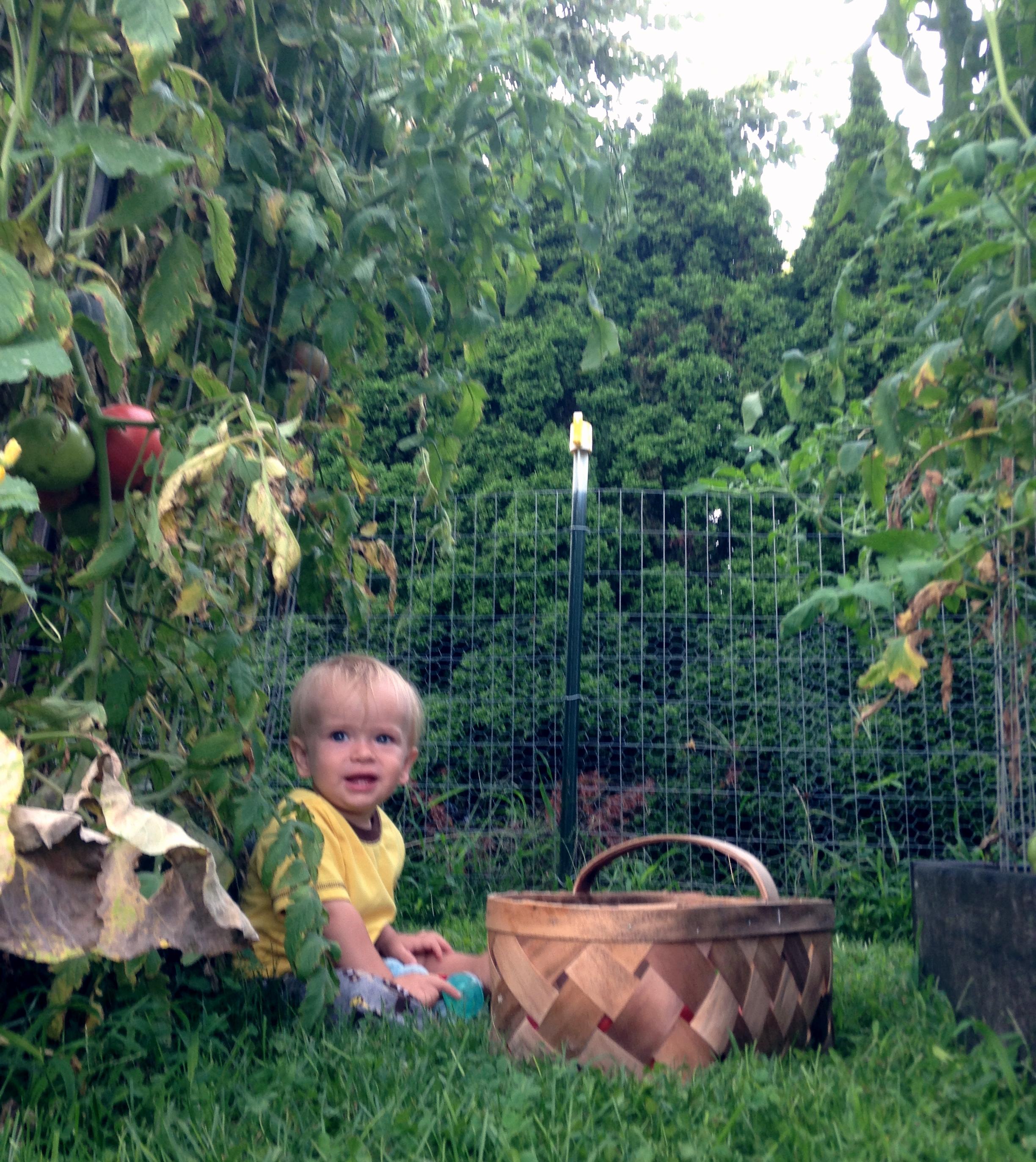 A little garden helper.