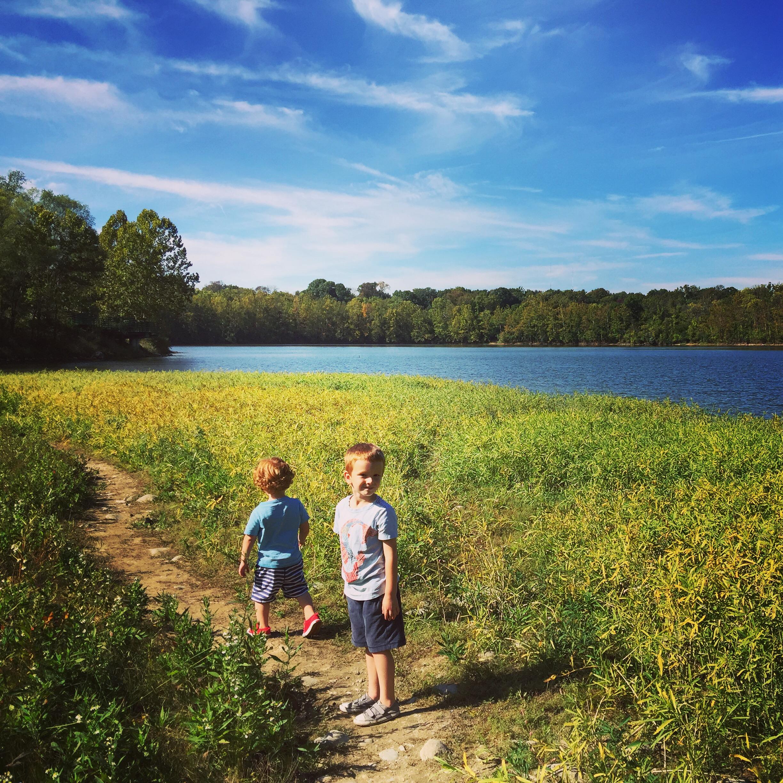100 Acres Nature Park