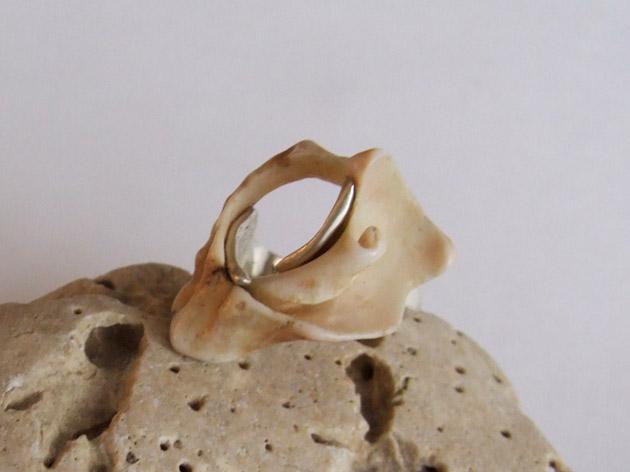 45 Fractal Shell ring.jpg