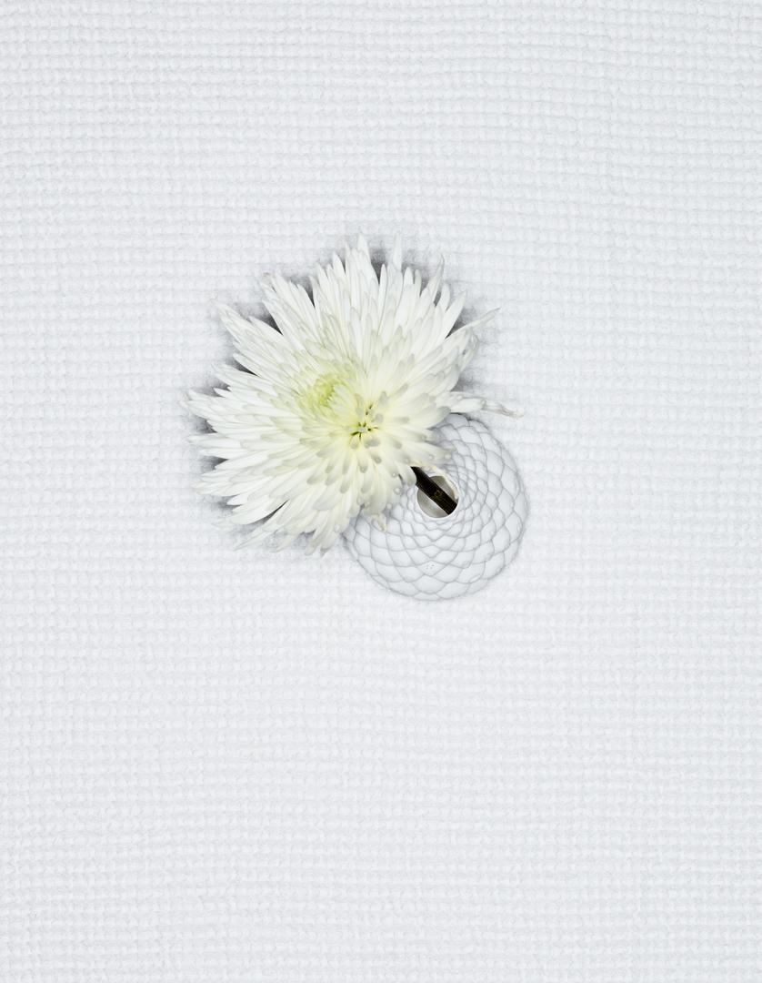 blomst_vase.jpg