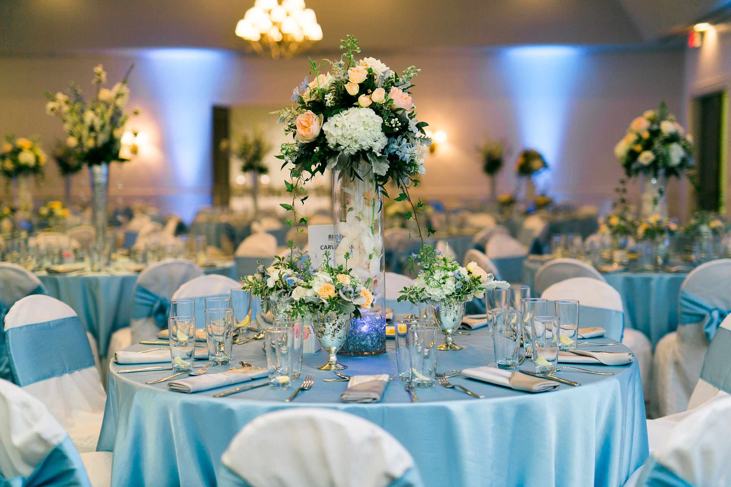 blue-silver-wedding-st-simons-island-heather-kyle-0898.jpg
