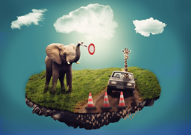 elephant dream.jpg