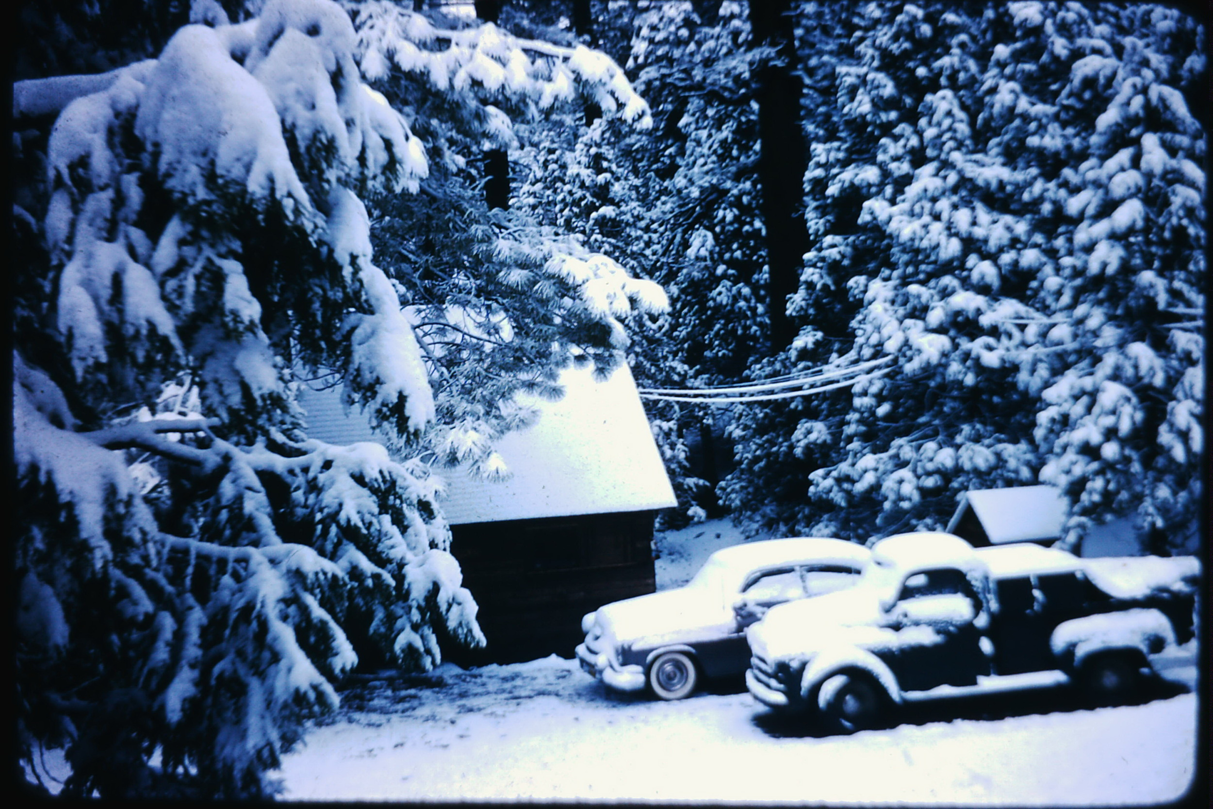 Snow on old trucks.jpg