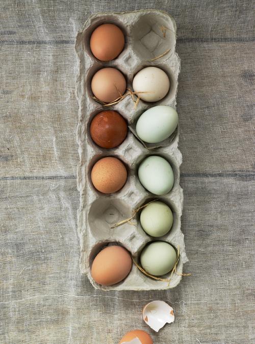 H-to-H_Still-Life-Eggs_16394.jpg