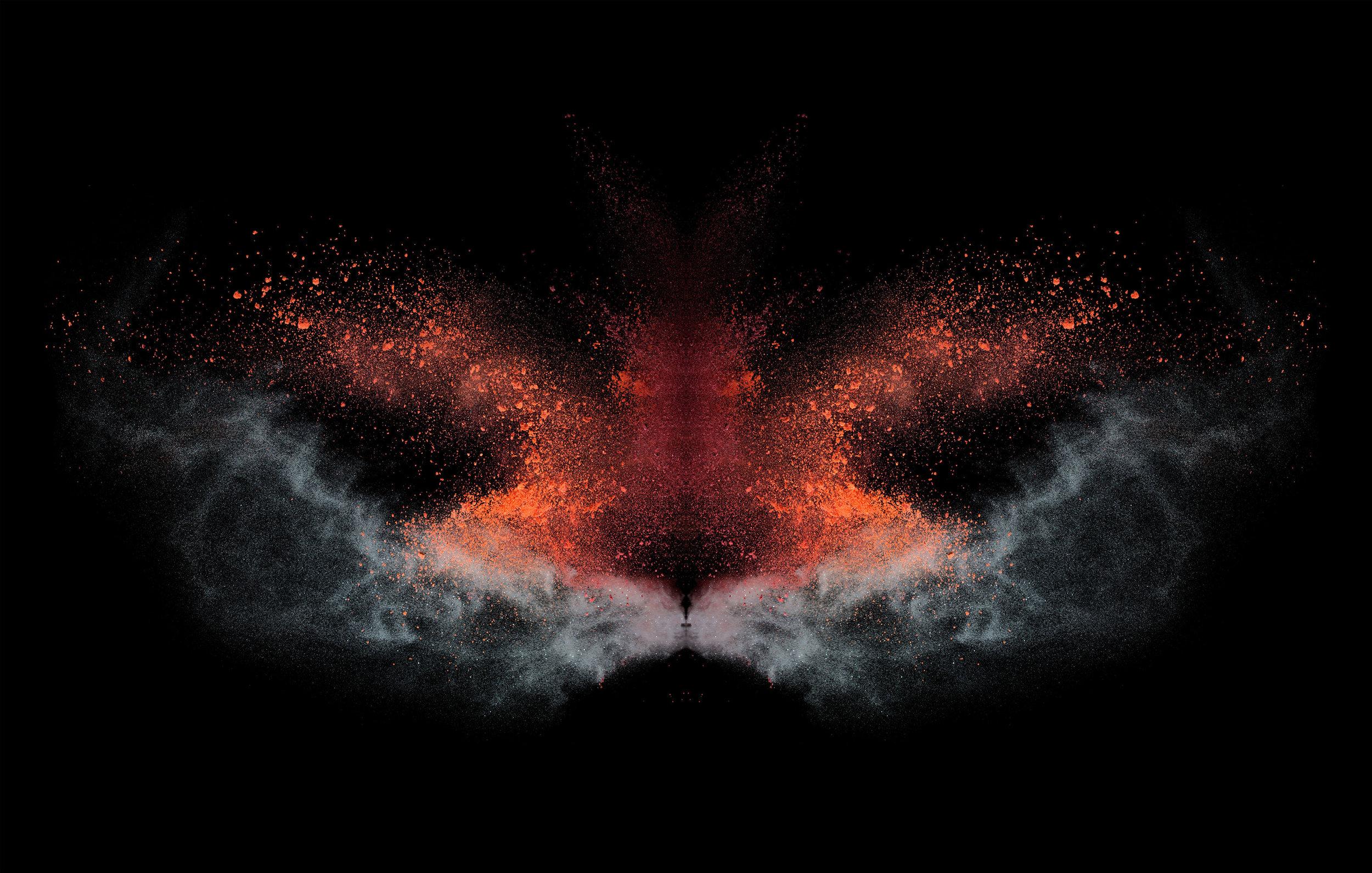 powder_butterfly_TIP-3143x2000.jpg