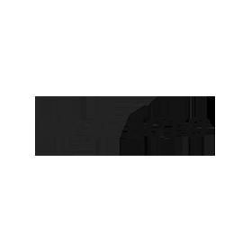 braveteco copy.png
