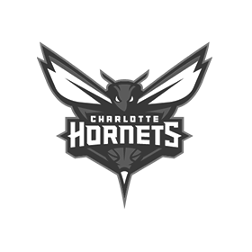 hornets copy.png