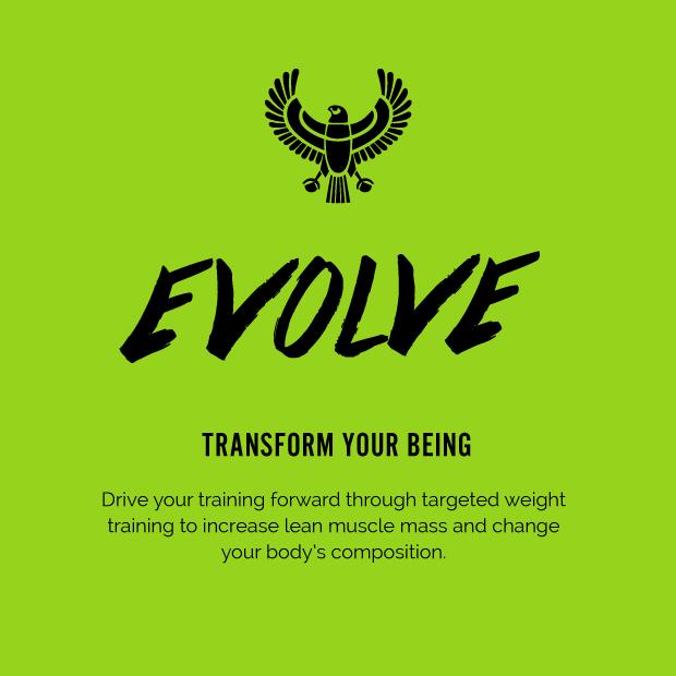 evolve_slide2.png