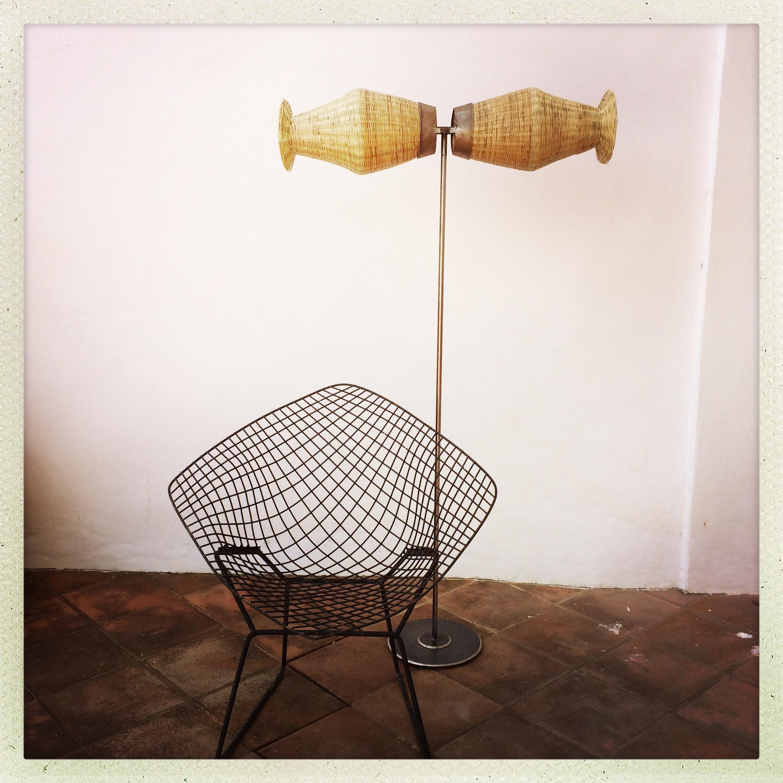 Bull Lamp