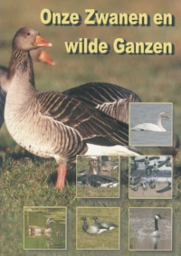 00161_Onze_zwanen_en_wilde_ganzen_WEB.jpg