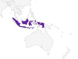 bronsstaart.PNG