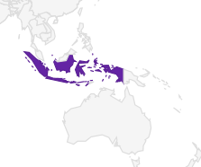bankiva.PNG