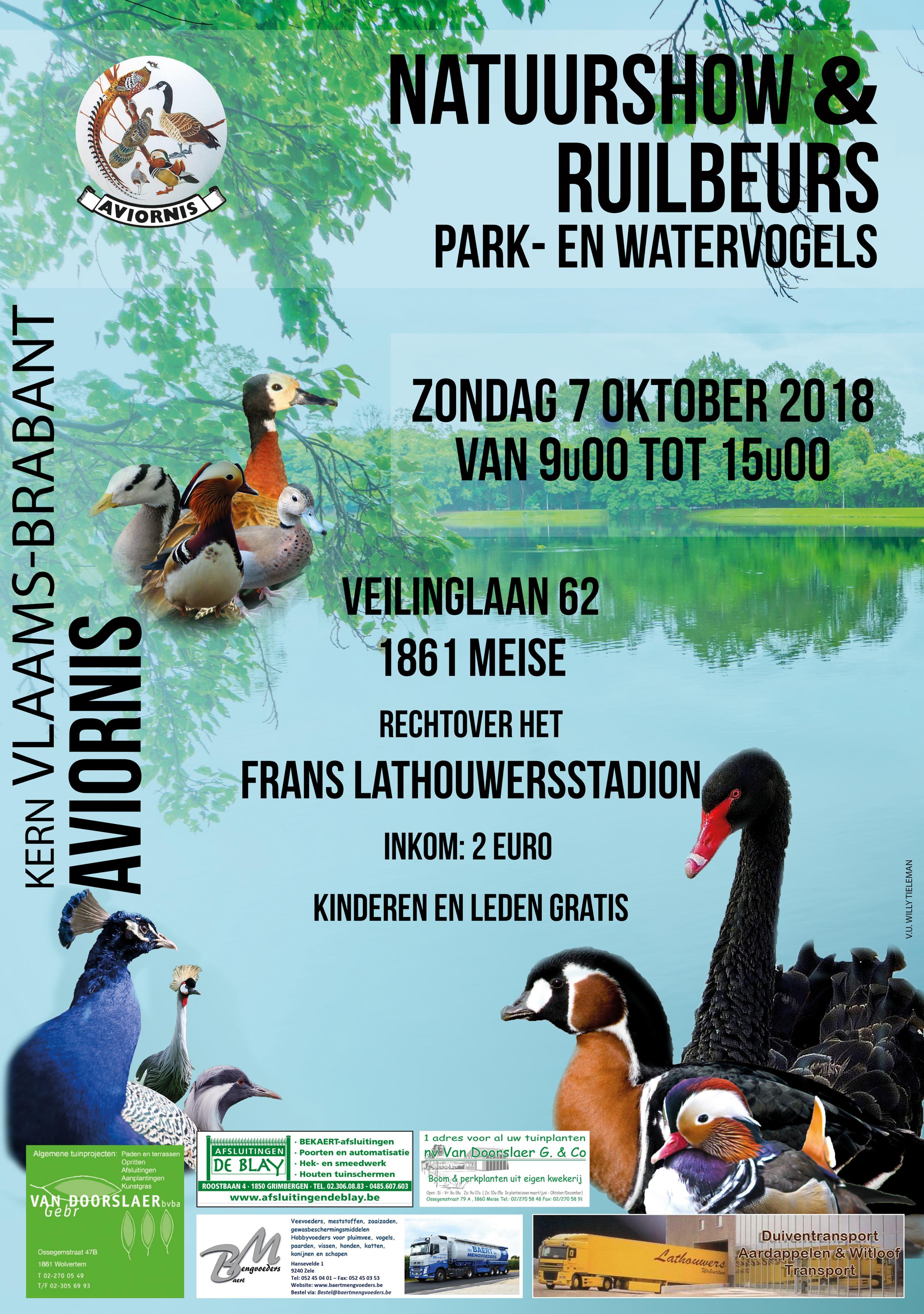 Affiche Avinobra 20182.png