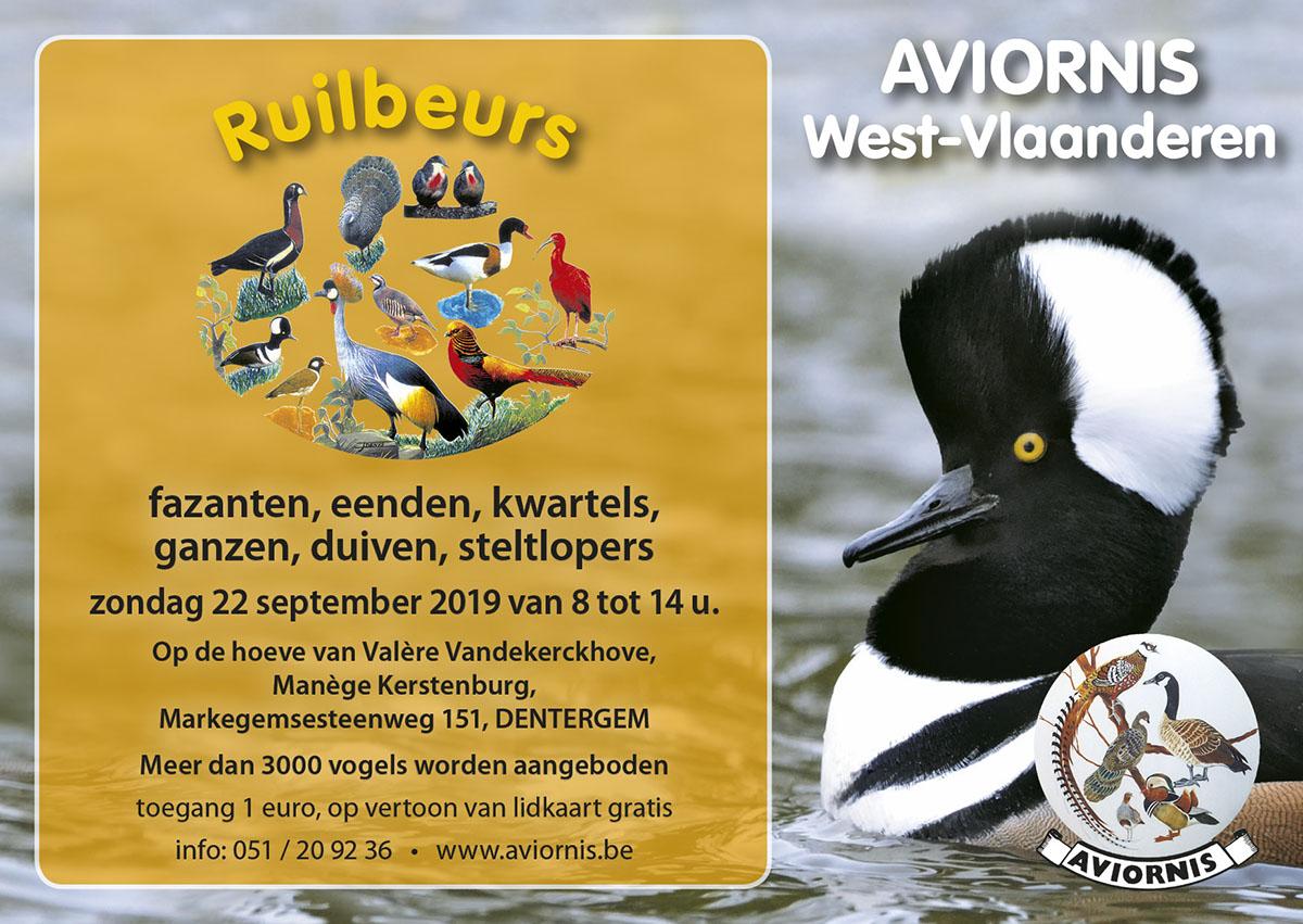 Aviornis_ruilbeurs_2019_NL (003).jpg