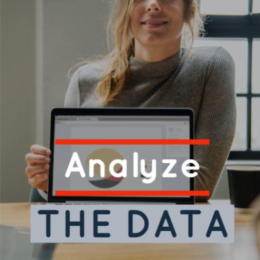 ANALYZE THE DATA.JPG