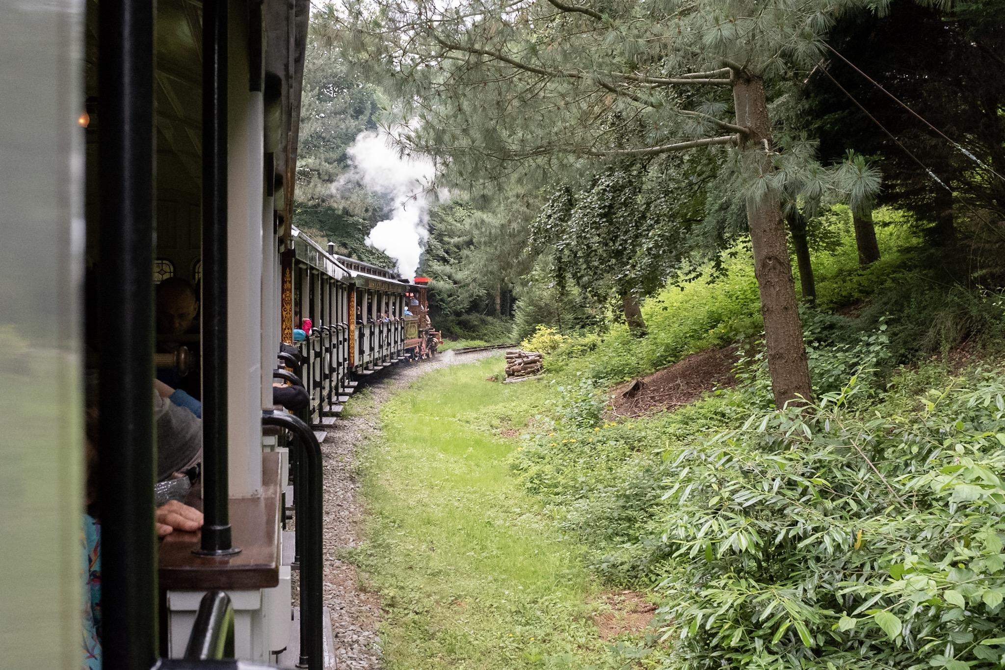 El paseo en tren por el parque es la mejor intro
