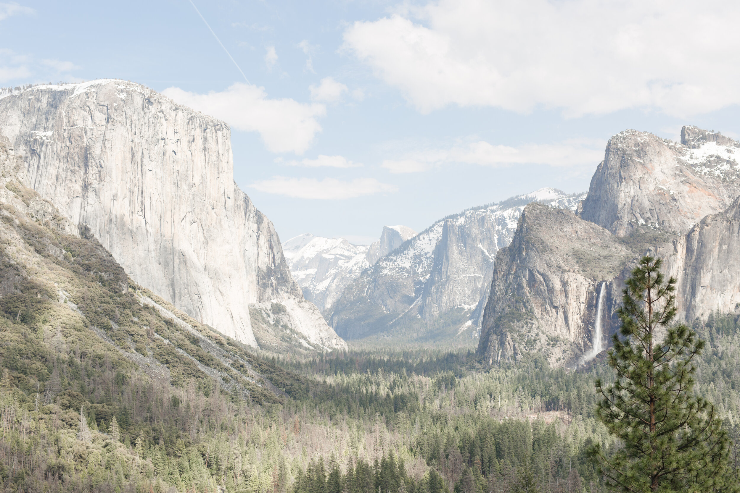 2019.03.36_Majestic_Yosemite_SS-7.jpg