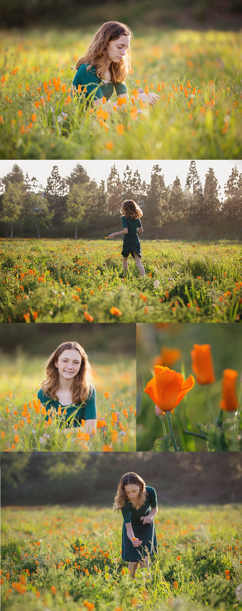 ventura county photographer julie campbell